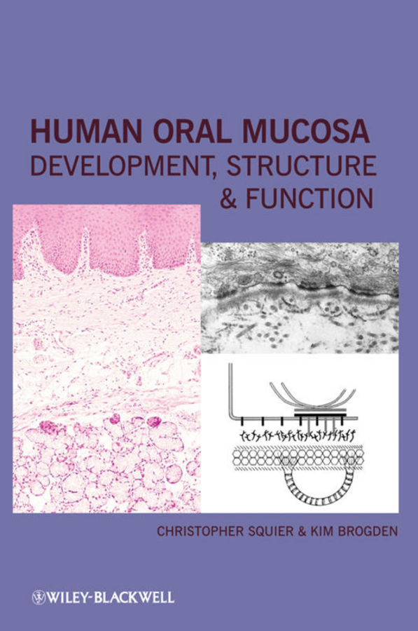 Human Oral Mucosa. Development, Structure and Function