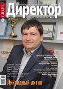 Книга Директор информационной службы №11/2009