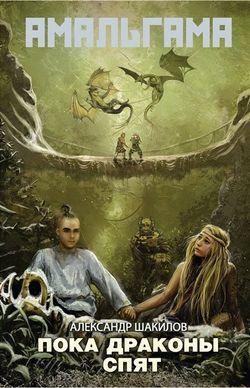 Электронная книга «Пока драконы спят»