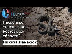 Насколько опасны змеи Ростовской области