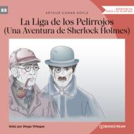 La Liga de los Pelirrojos - Una Aventura de Sherlock Holmes (Versión íntegra)