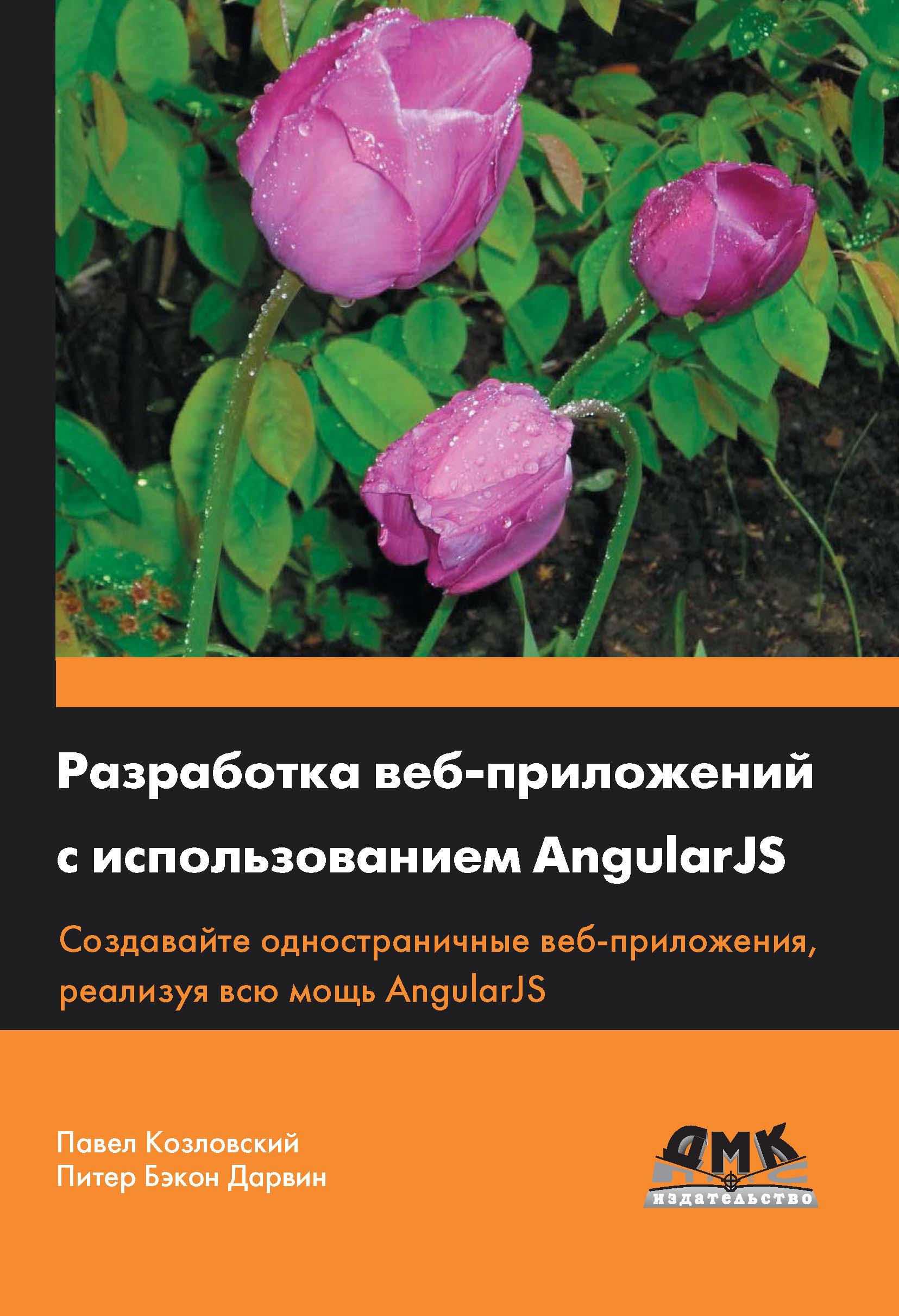 Павел Козловский Разработка веб-приложений с использованием AngularJS секс через веб камеру онлайн