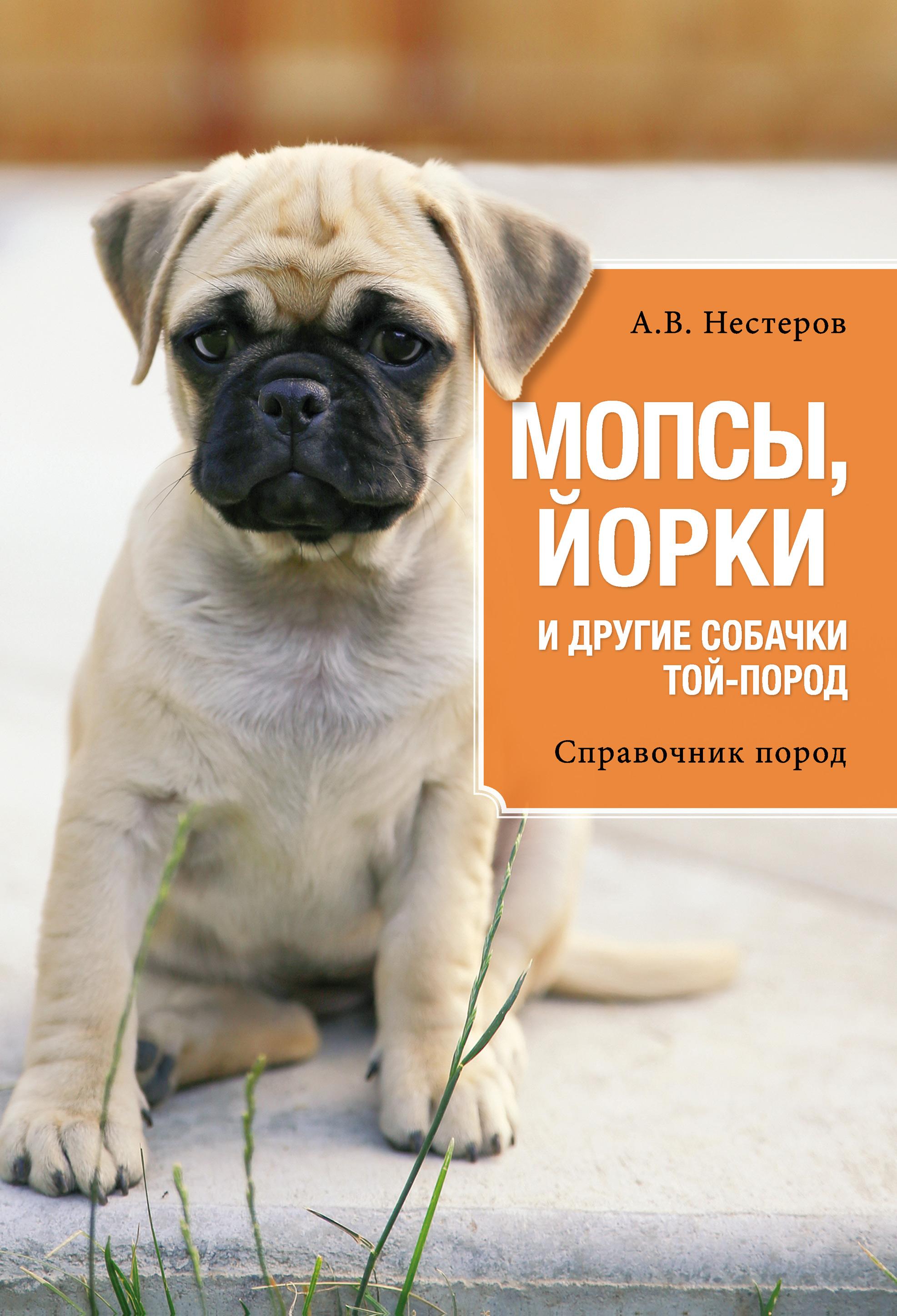 Мопсы, йорки и другие собачки той-пород