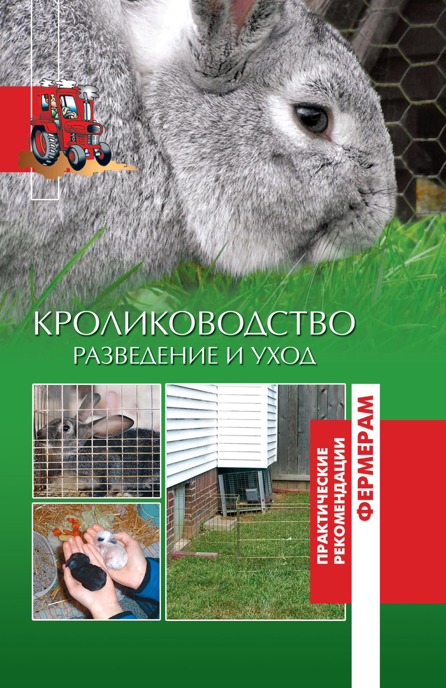 Отсутствует Кролики. Разведение и уход как правильно разводить краску матрикс