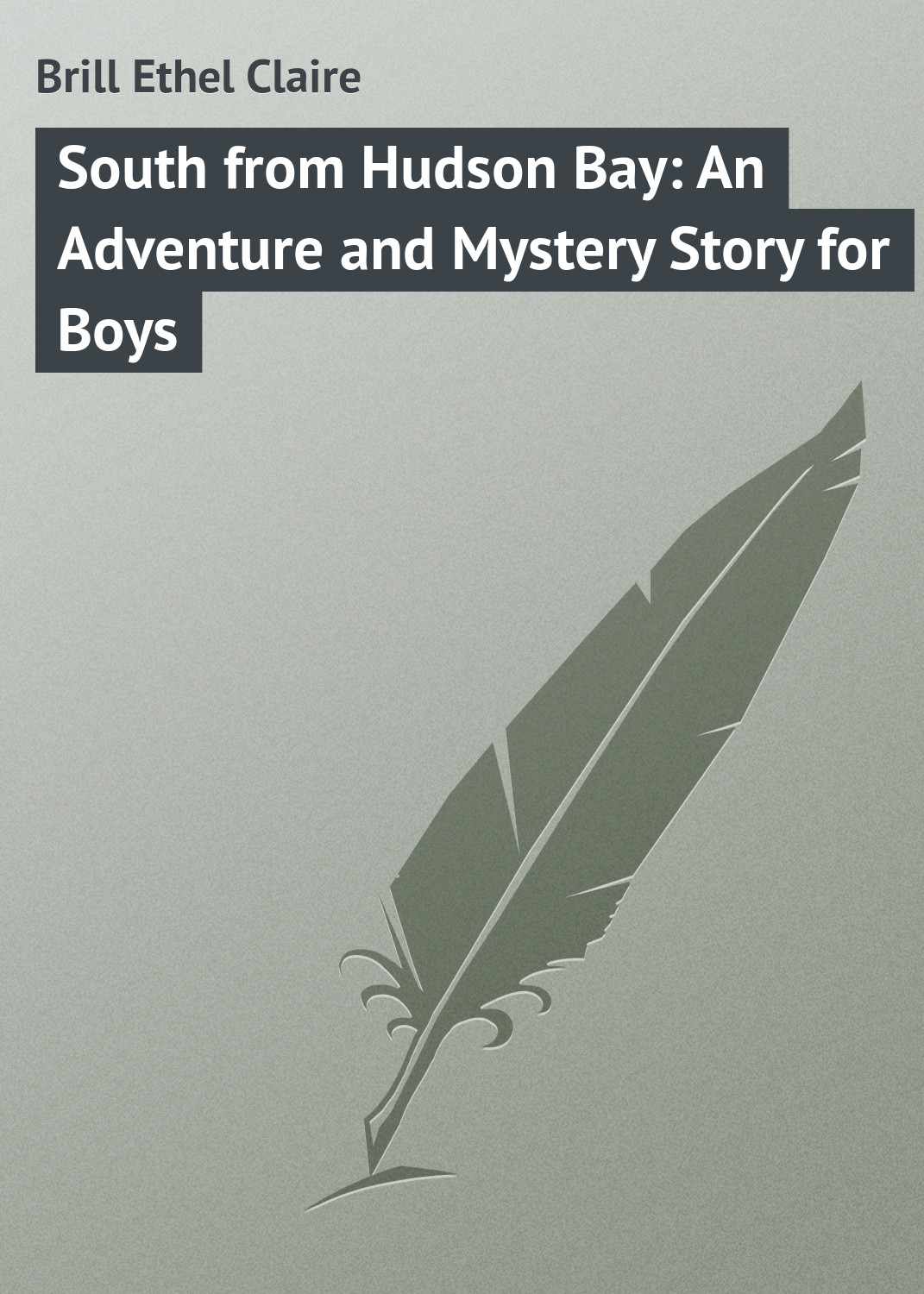 Brill Ethel Claire South from Hudson Bay: An Adventure and Mystery Story for Boys goodwin harold leland the wailing octopus a rick brant science adventure story