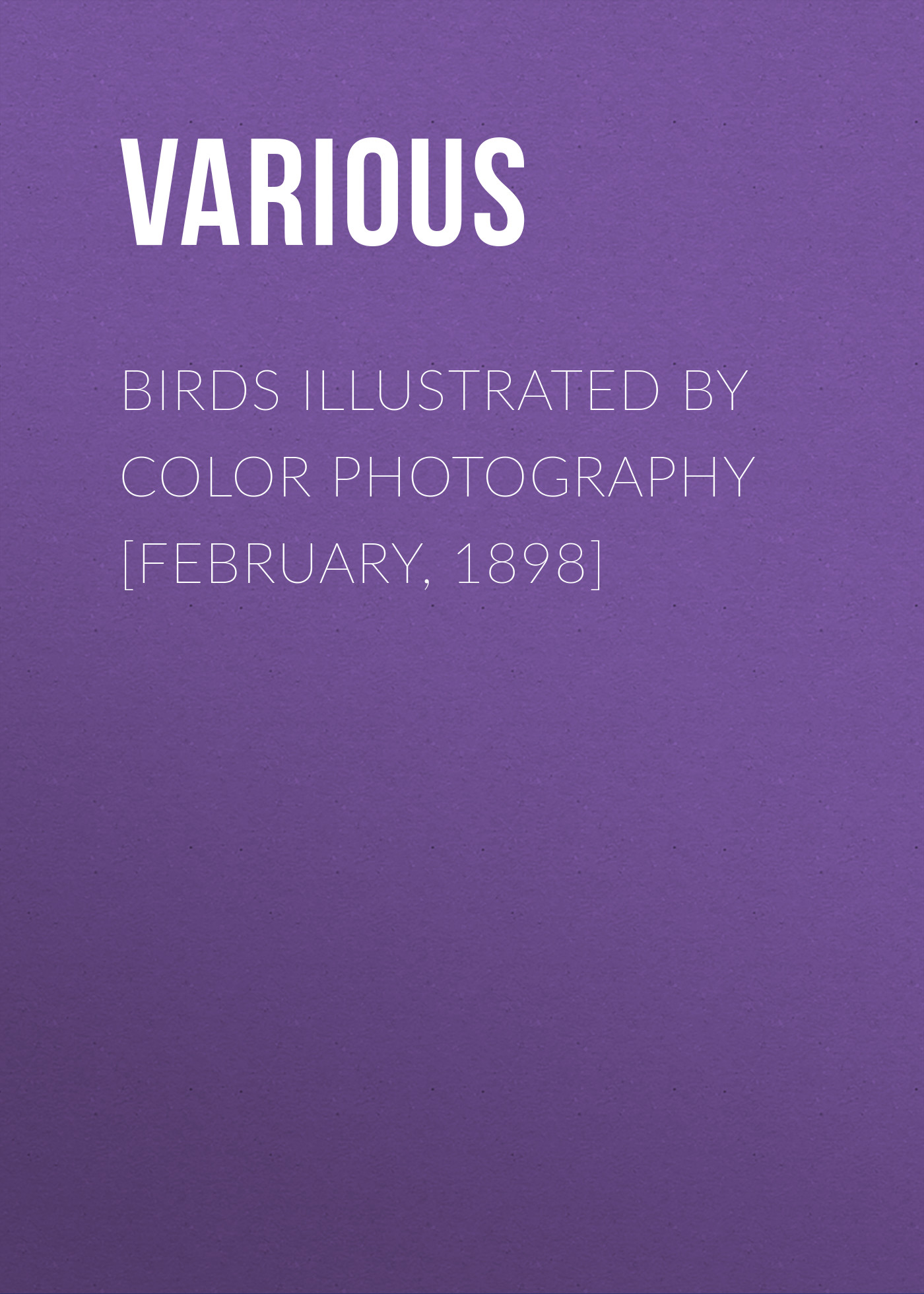 Various Birds Illustrated by Color Photography [February, 1898] d 6521 dark grey backdrop newborn photography backdrop retro pure color pet photography backgrounds 4x6ft 1 25x2m