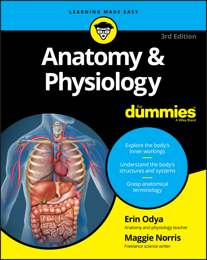 Erin Odya Anatomy and Physiology For Dummies цена