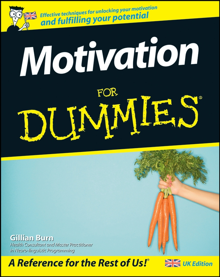 Gillian Burn Motivation For Dummies pat mesiti the $1 million reason to change your mind