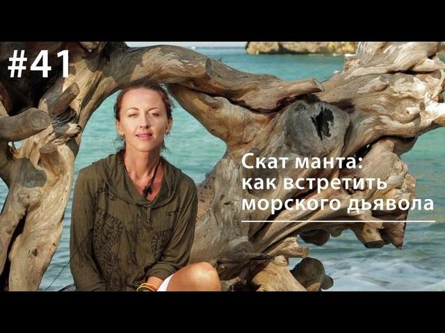 Евгения Тимонова Манта: как встретить морского дьявола евгения тимонова сурок наука сна