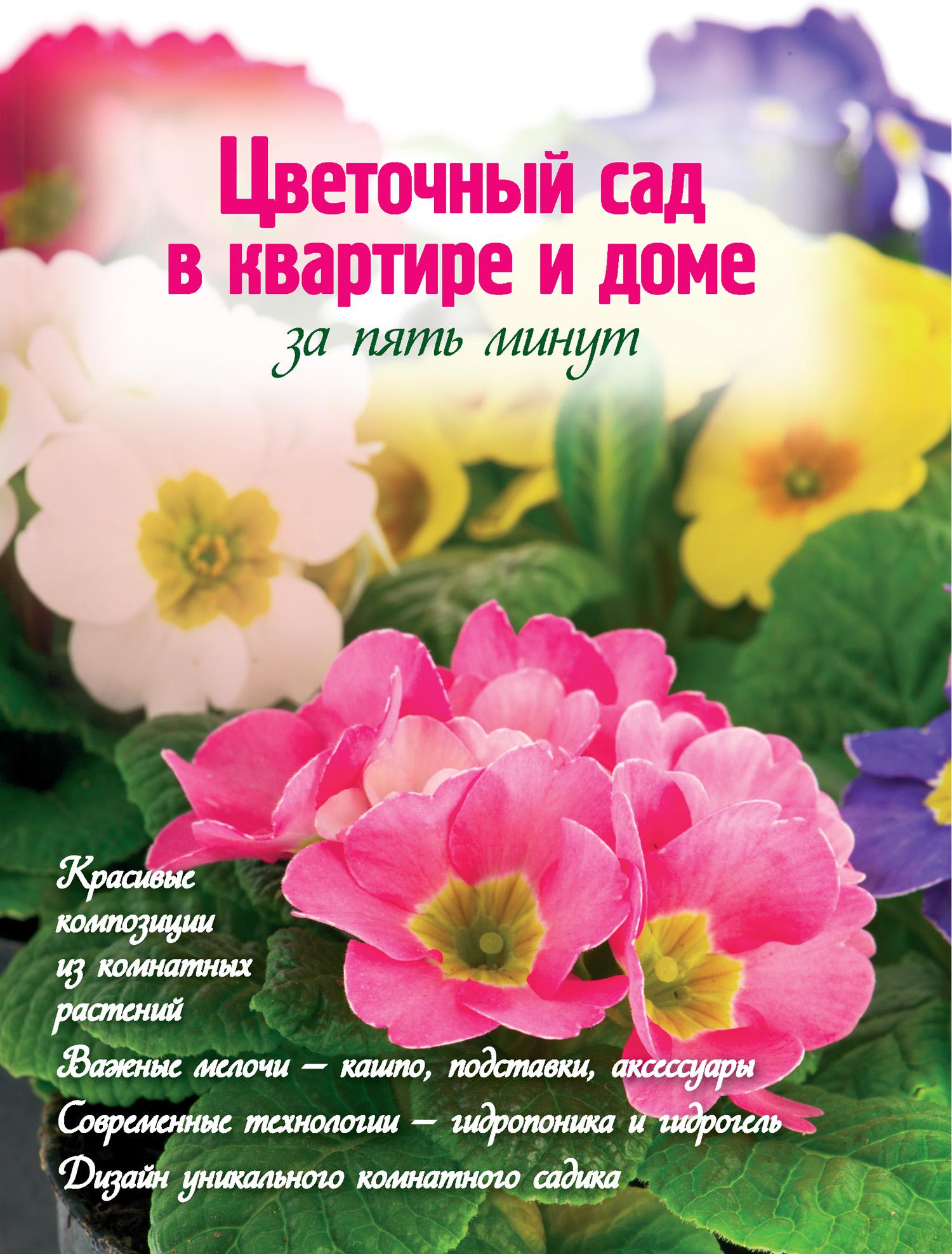Наталья Власова Цветочный сад в квартире и доме за пять минут власова наталья цветочный сад в квартире и доме за пять минут