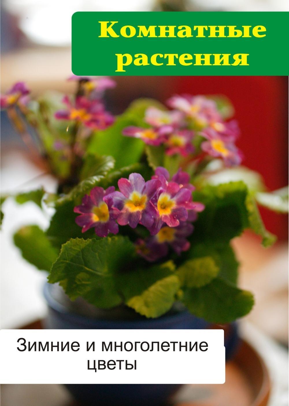 Илья Мельнико Комнатные растения. Зимние и цеты
