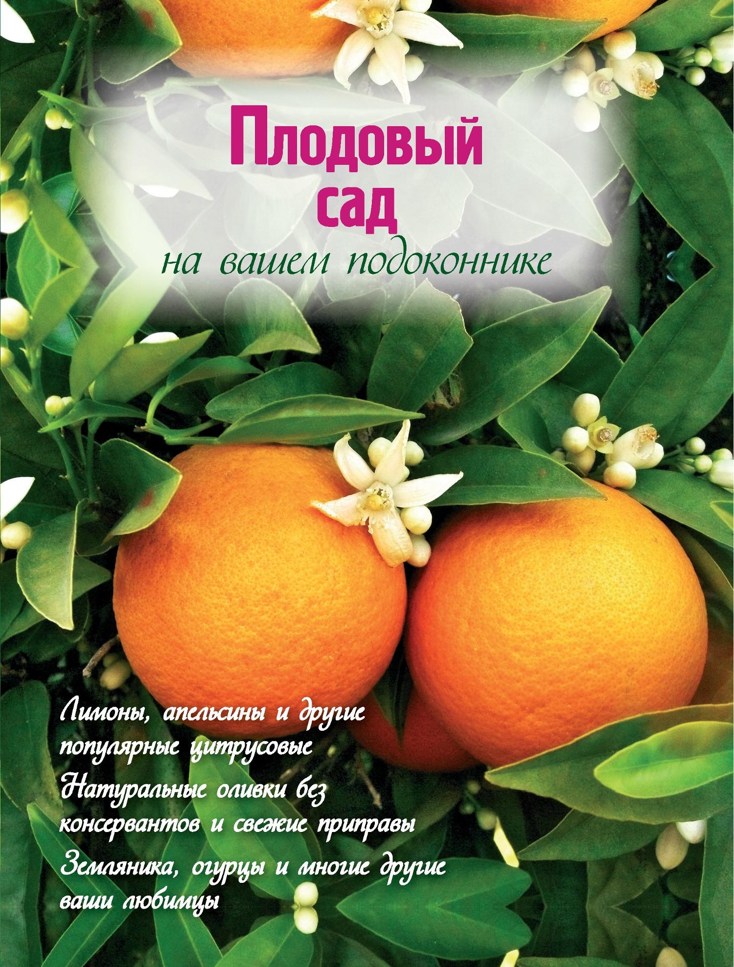 Наталья Власова Плодовый сад на вашем подоконнике власова наталья цветочный сад в квартире и доме за пять минут