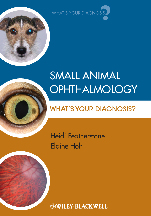 лучшая цена Featherstone Heidi Small Animal Ophthalmology. What's Your Diagnosis?