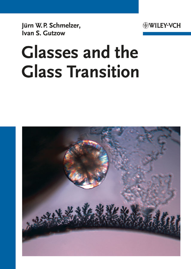 Фото - Snejana Todorova V. Glasses and the Glass Transition hae soo kwak nano and microencapsulation for foods