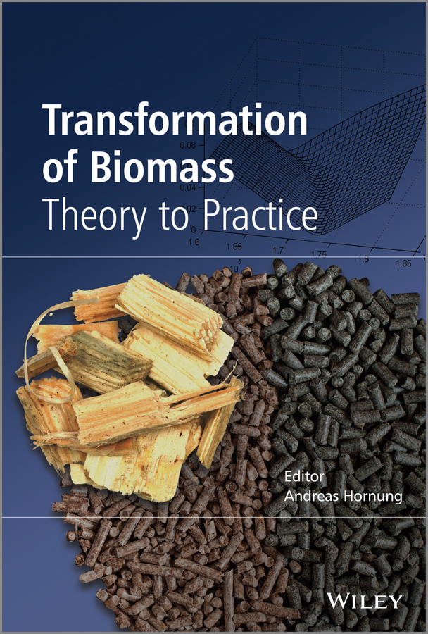 Andreas Hornung Transformation of Biomass. Theory to Practice цены онлайн