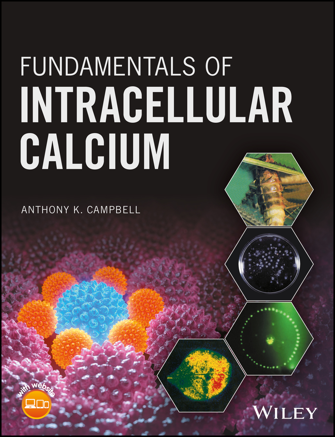 Anthony Campbell K. Fundamentals of Intracellular Calcium storage of mango treated with calcium chloride