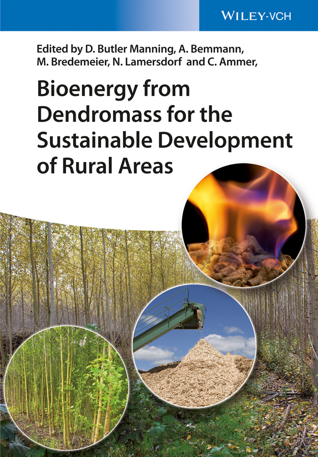 Albrecht Bemmann Bioenergy from Dendromass for the Sustainable Development of Rural Areas все цены