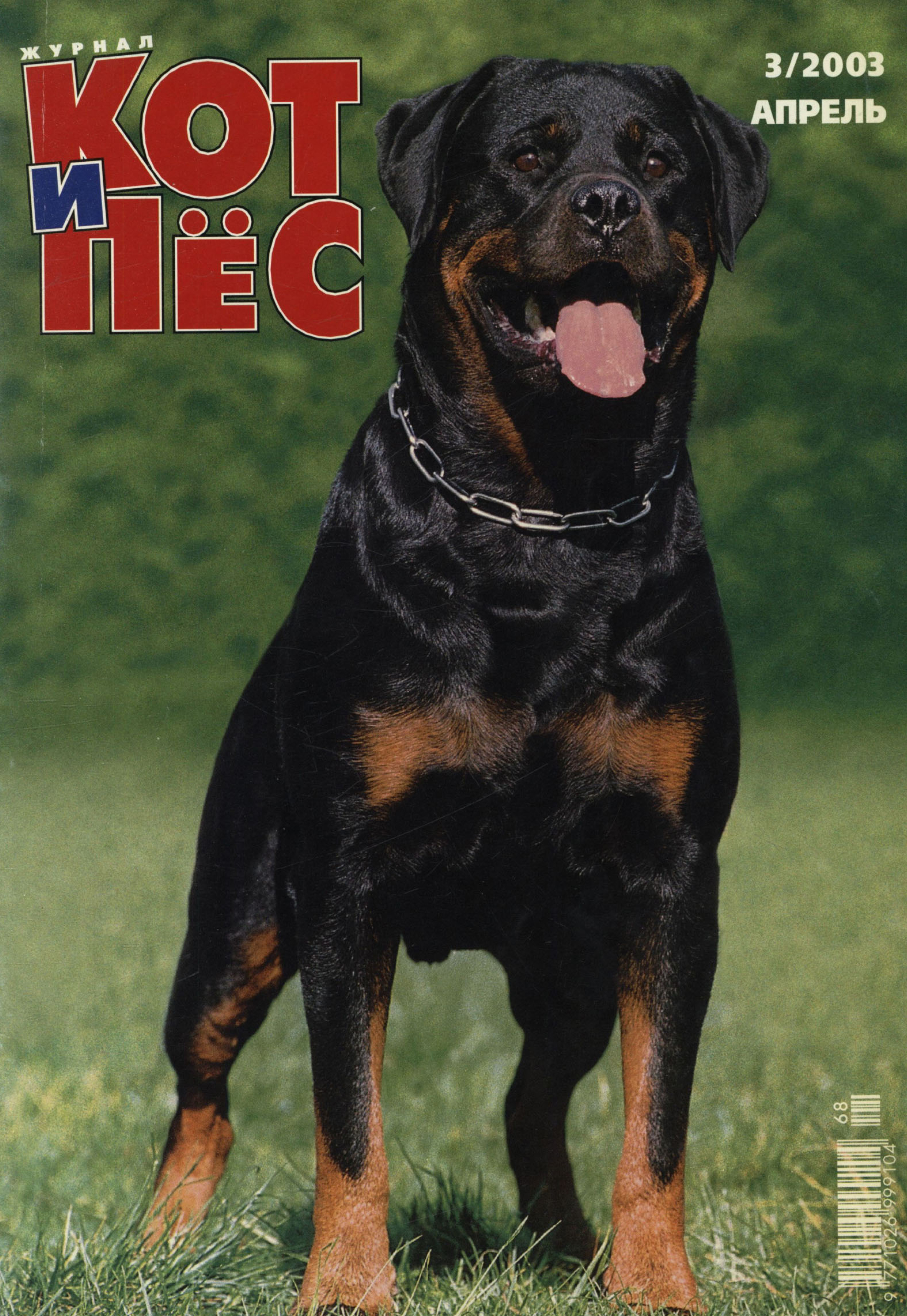 Отсутствует Кот и Пёс №03/2003 календарь а2 printio салют