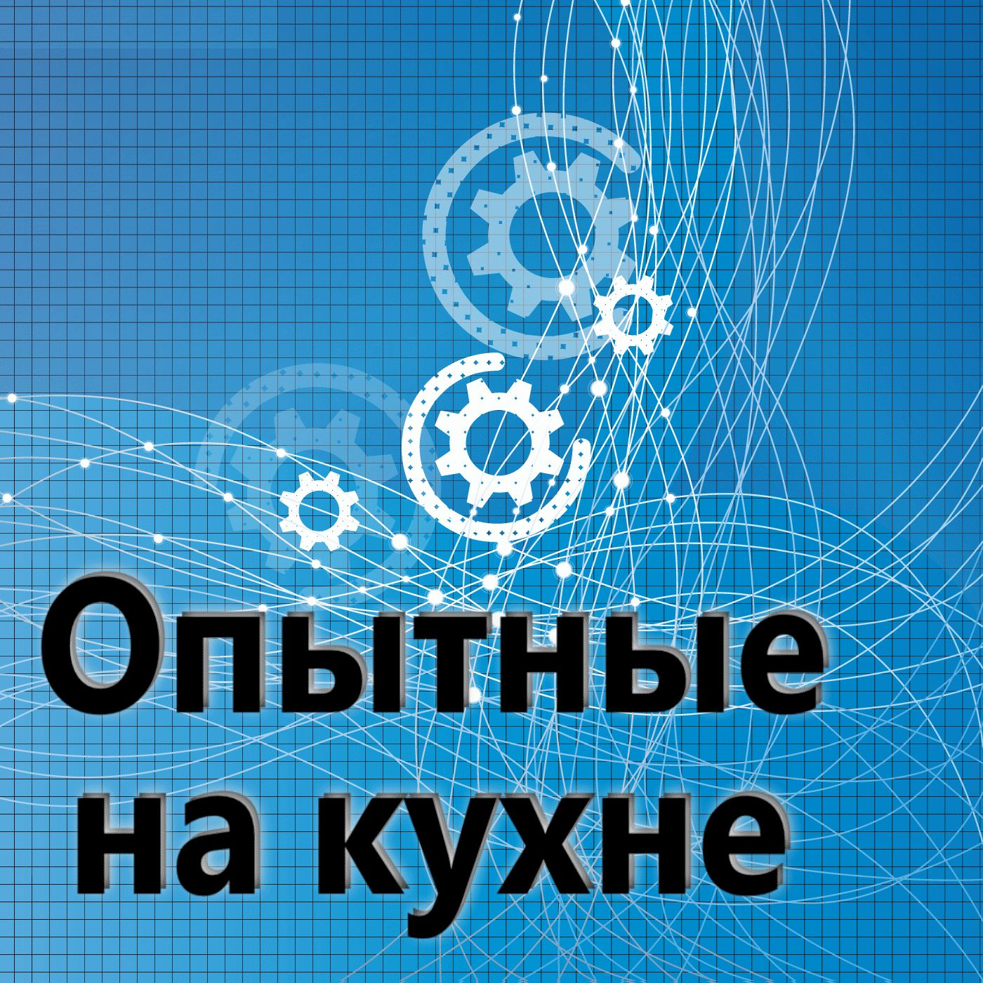 Евгений Плешивцев Опытные на кухне №079