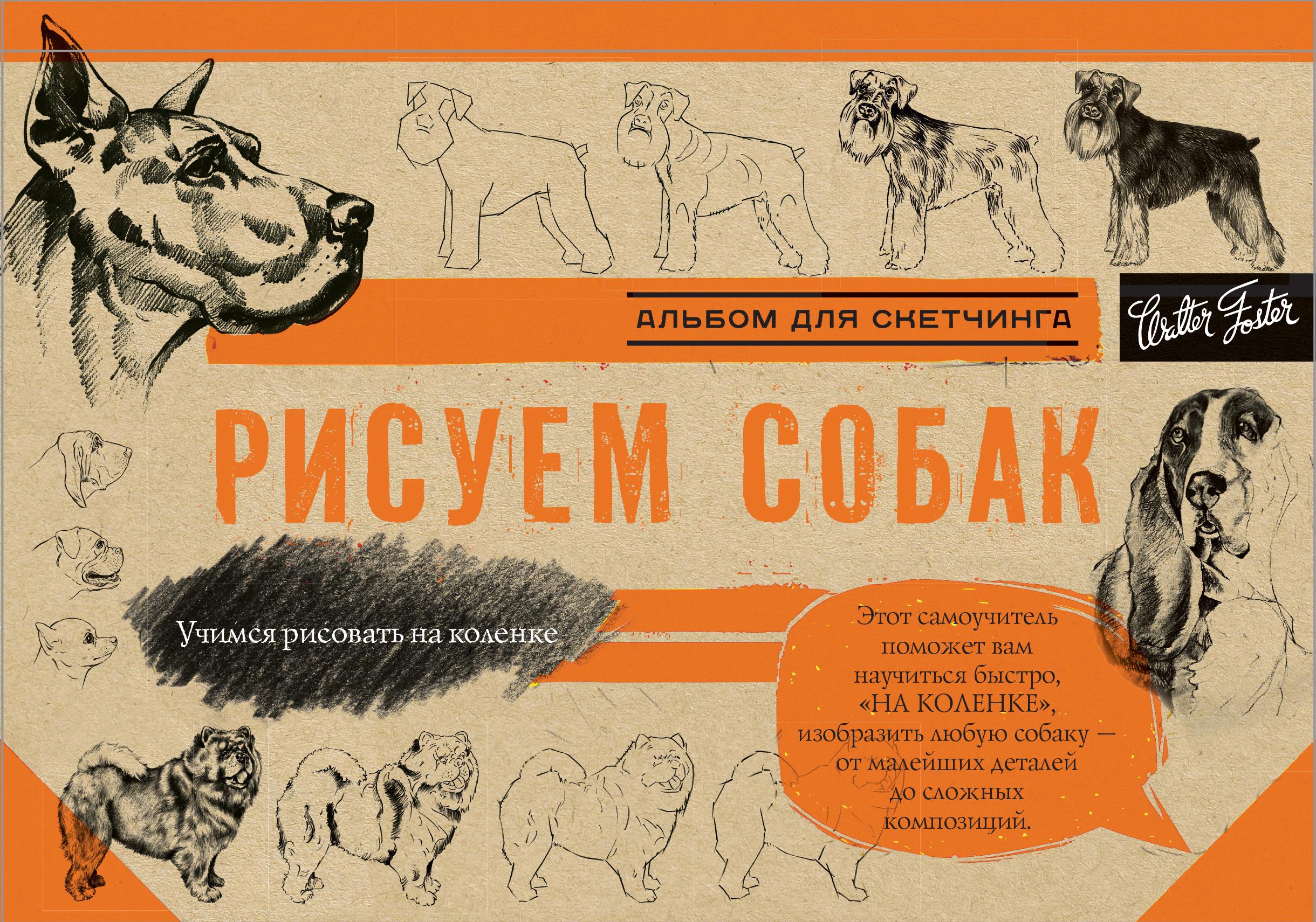 Коллектив авторов Рисуем собак. Альбом для скетчинга цена и фото