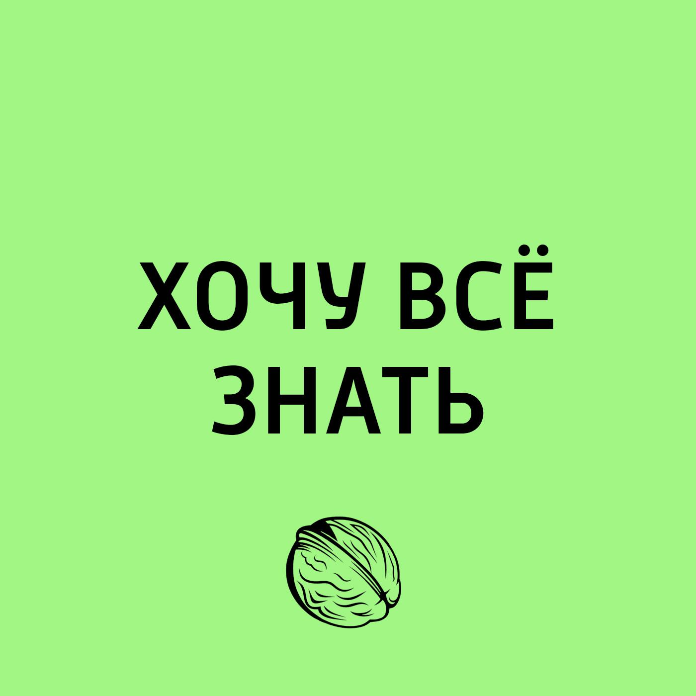 Творческий коллектив программы «Хочу всё знать» Как справляться с поражениями творческий коллектив программы хочу всё знать органы чувств у растений