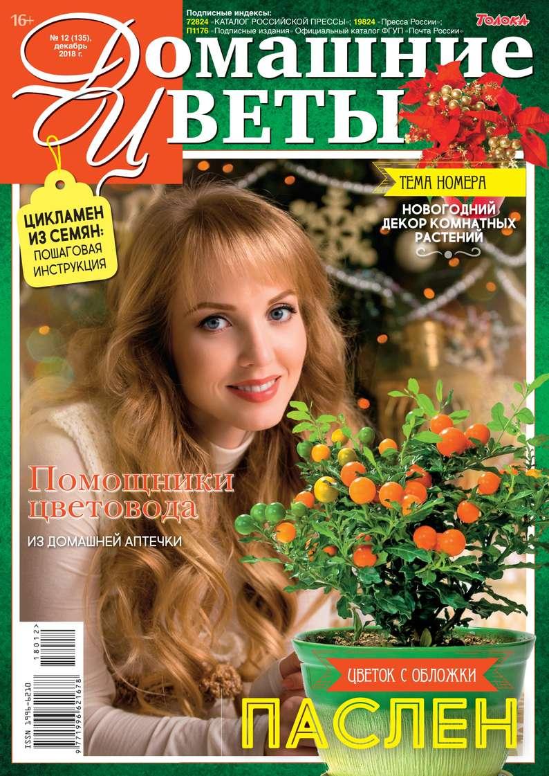 Редакция журнала Домашние Цветы Домашние Цветы 12-2018 домашние кинотеатры