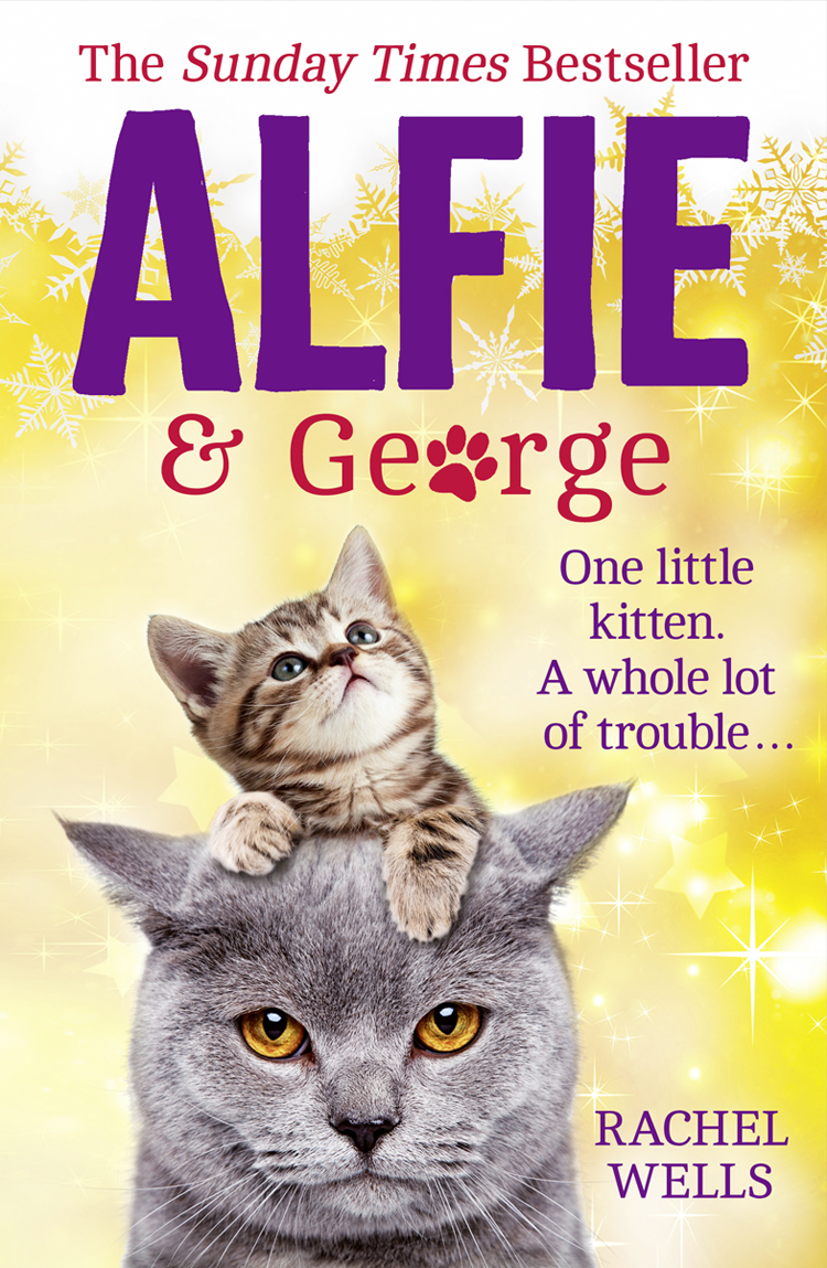 Rachel Wells Alfie and George: A heart-warming tale about how one cat and his kitten brought a street together alfie s christmas