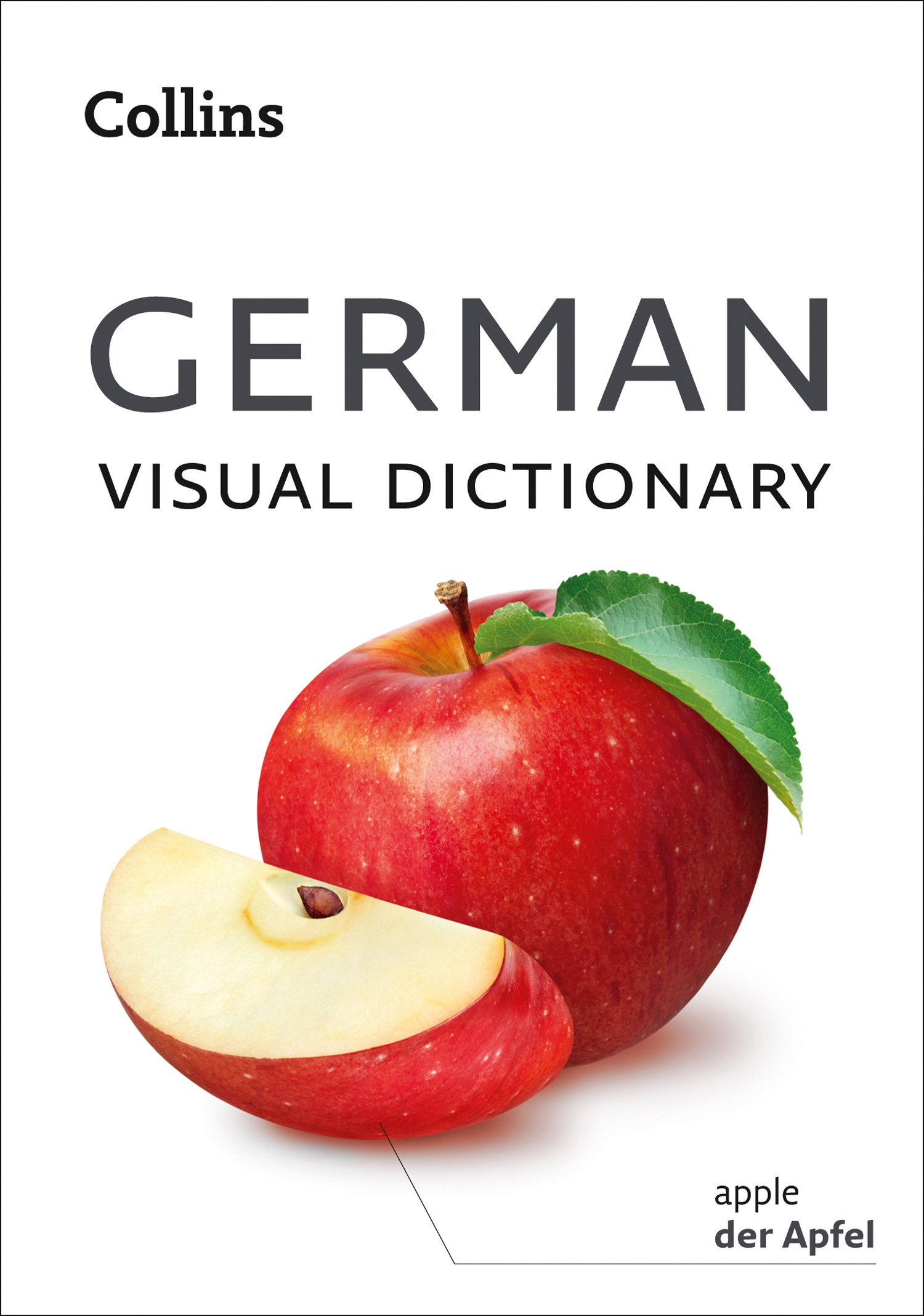 Collins Dictionaries Collins German Visual Dictionary rough guide german