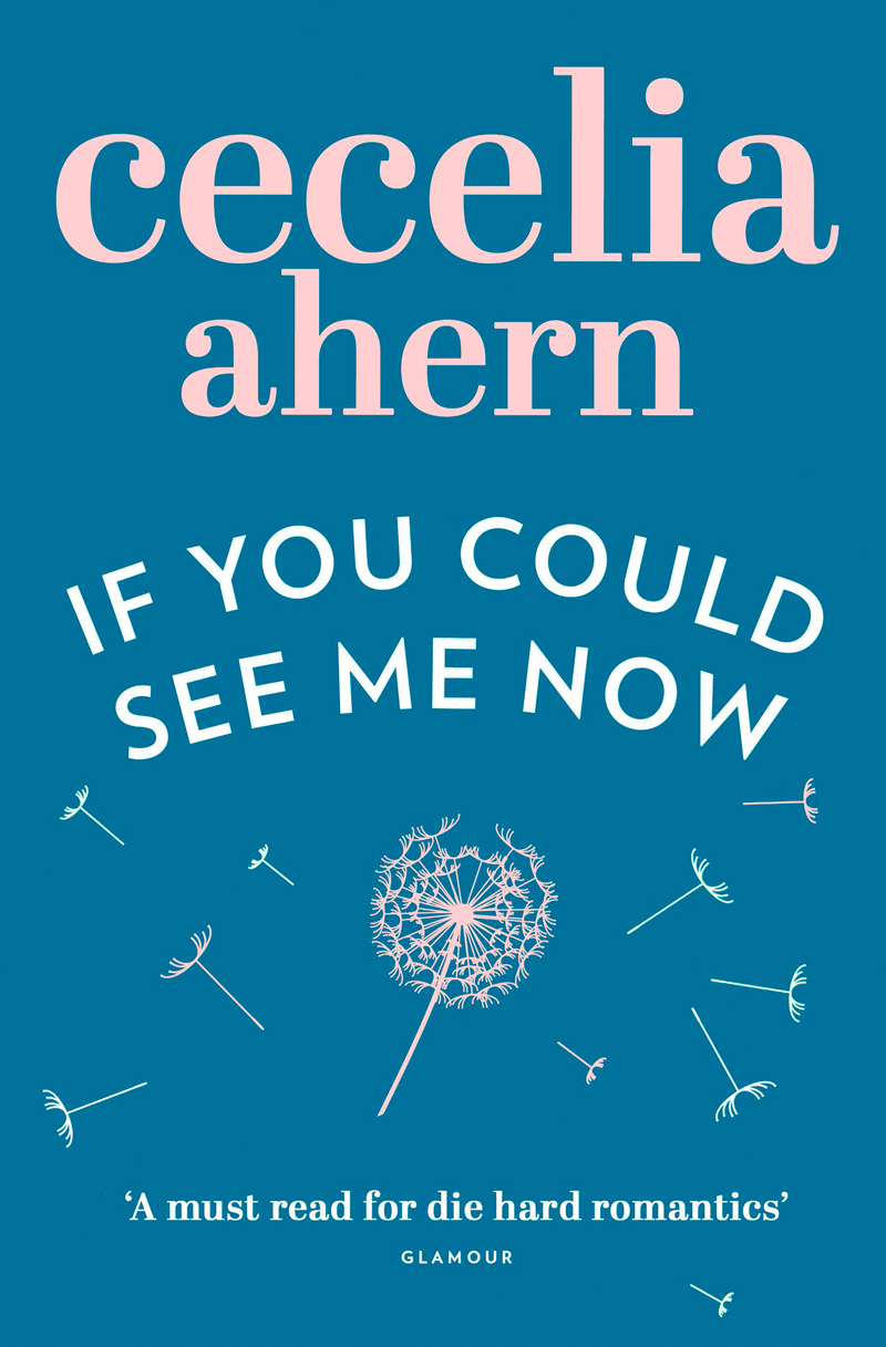 Cecelia Ahern If You Could See Me Now how ivan went to see the sun