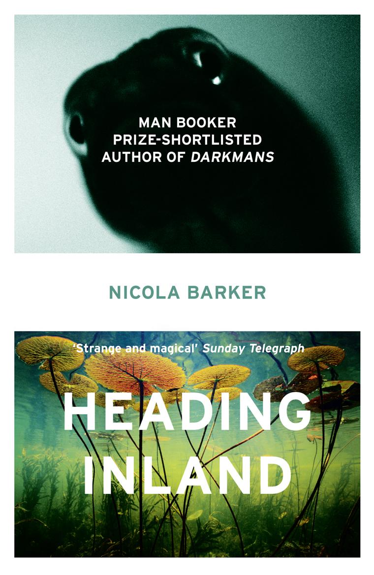 лучшая цена Nicola Barker Heading Inland