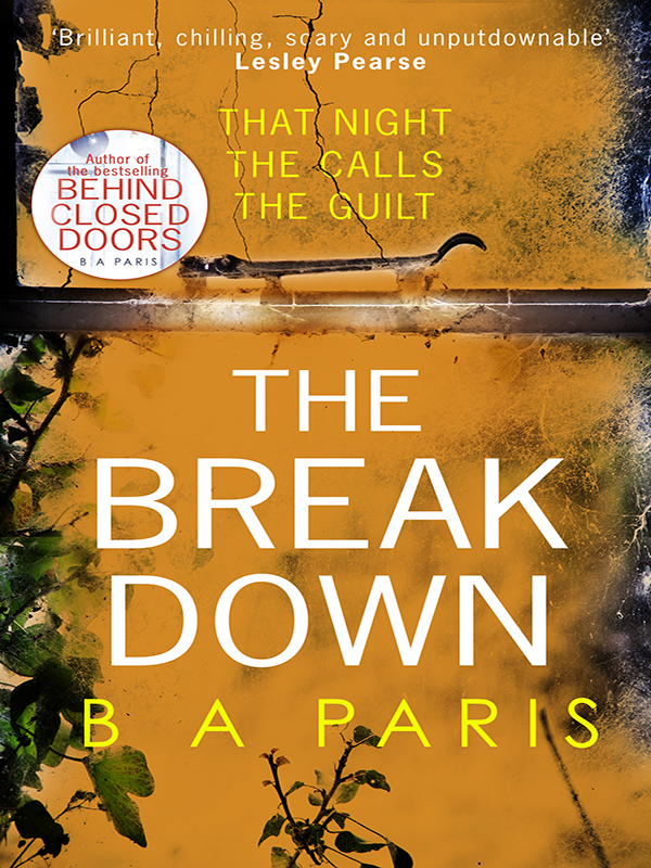 B Paris A The Breakdown: The gripping thriller from the bestselling author of Behind Closed Doors adidas performance шапка stripy beanie adidas page 2