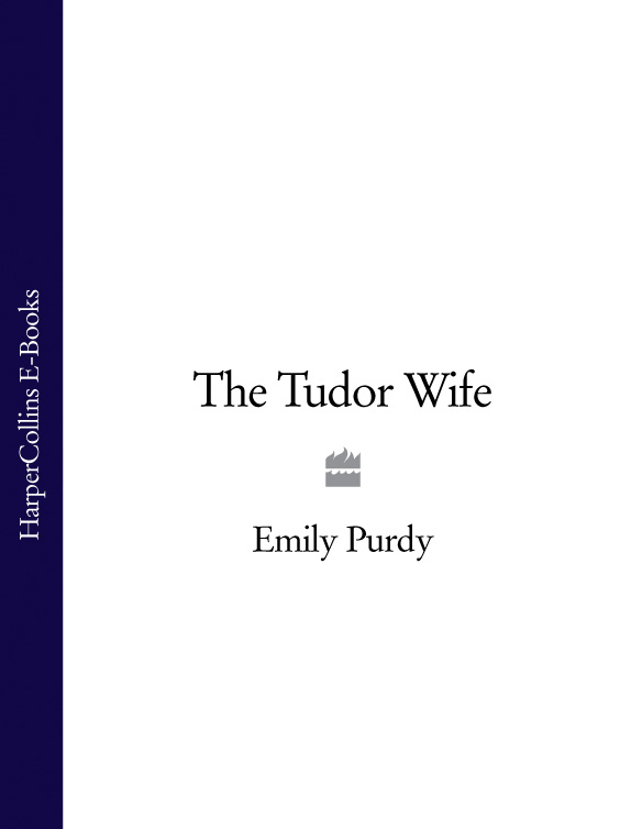 Emily Purdy The Tudor Wife philip howard the lives of philip howard earl of arundel and of anne dacres his wife ed by the duke of norfolk