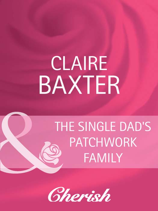 Claire Baxter The Single Dad's Patchwork Family brand new japan smc genuine slide table mxq8 20