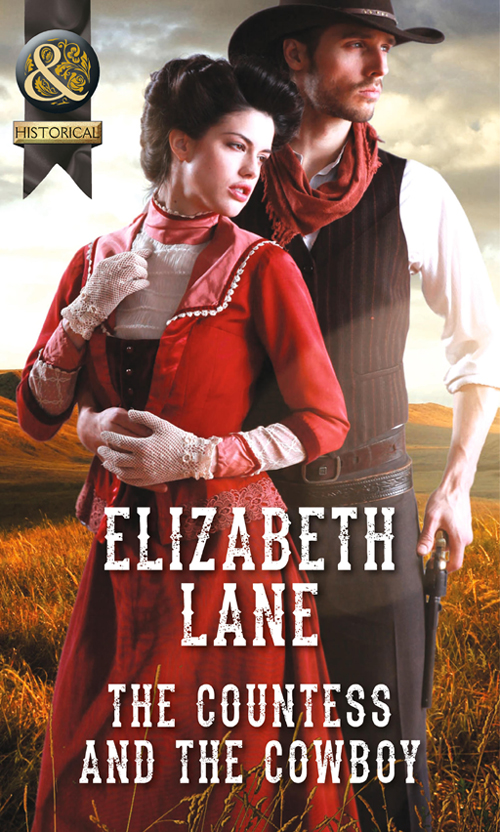 цены на Elizabeth Lane The Countess and the Cowboy в интернет-магазинах