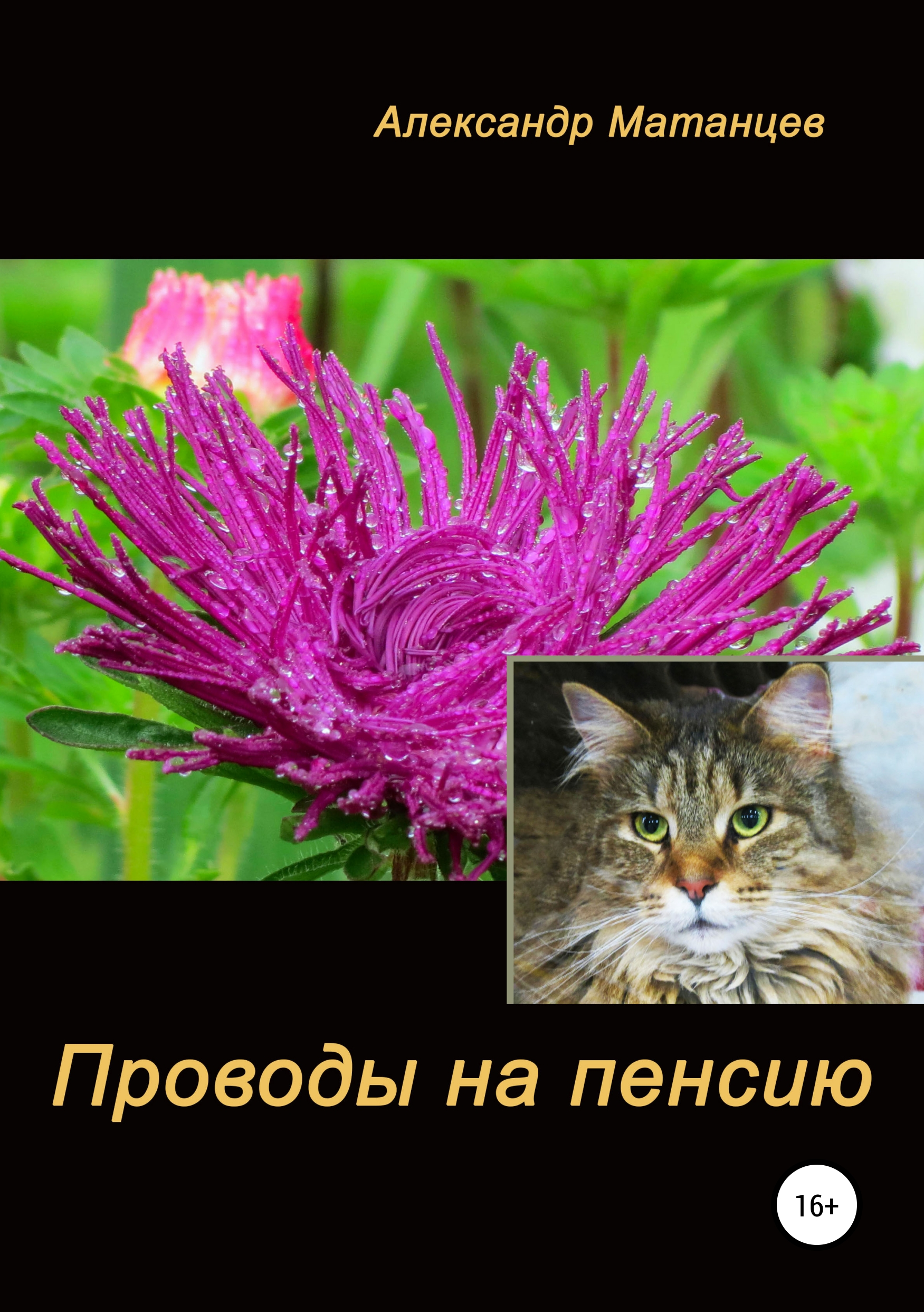 Александр Матанцев Проводы на пенсию ямалеев р нихрена анекдоты в стихах