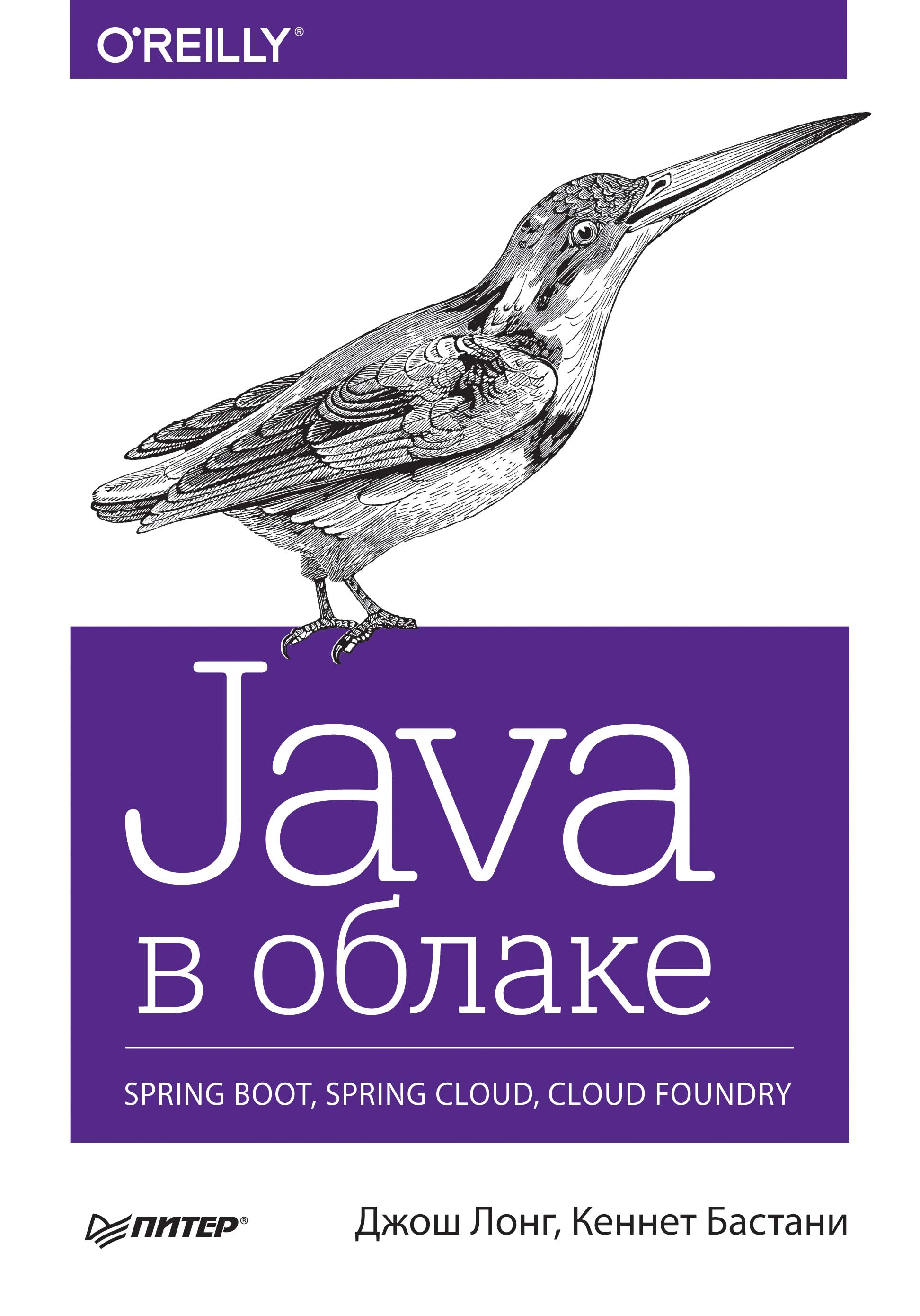 Кеннет Бастани Java в облаке. Spring Boot, Spring Cloud, Cloud Foundry тимур машнин современные java технологии на практике