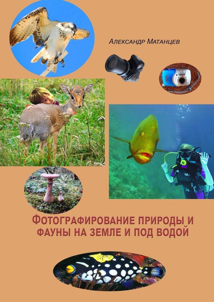 Александр Матанцев Фотографирование природы ифауны наземле ипод водой под водой
