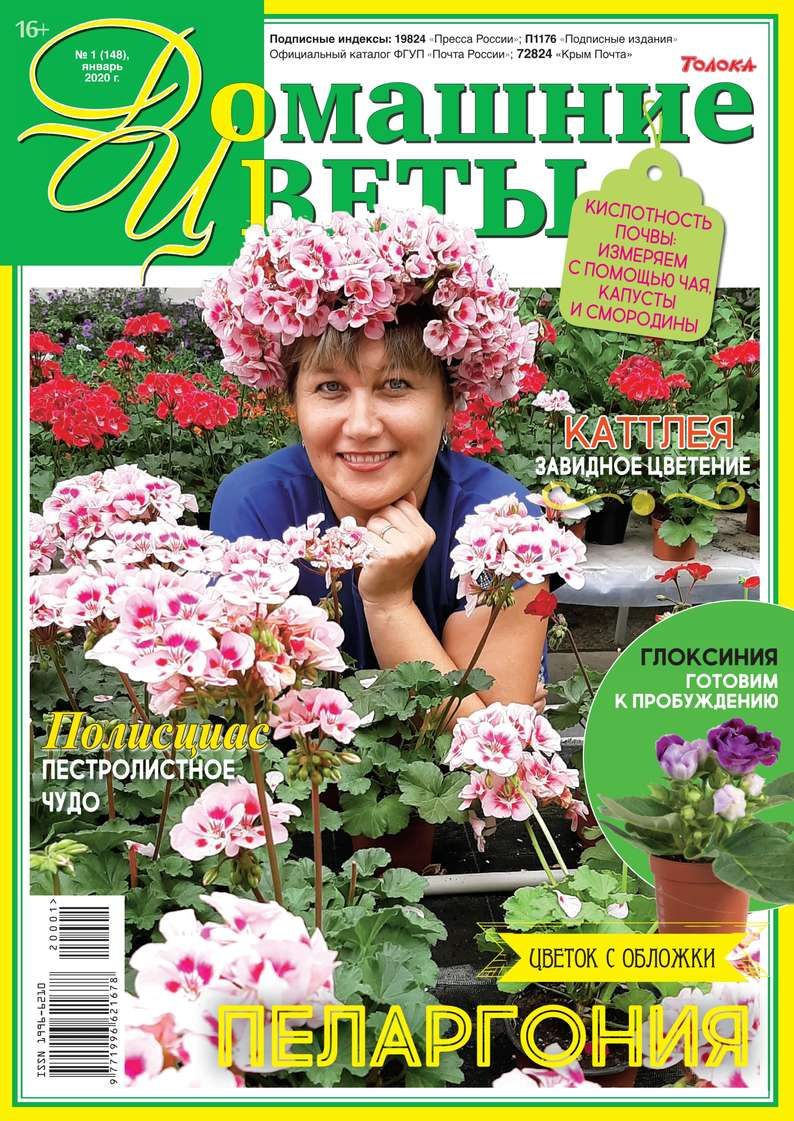 Редакция журнала Домашние Цветы Домашние Цветы 01-2020 домашние кинотеатры