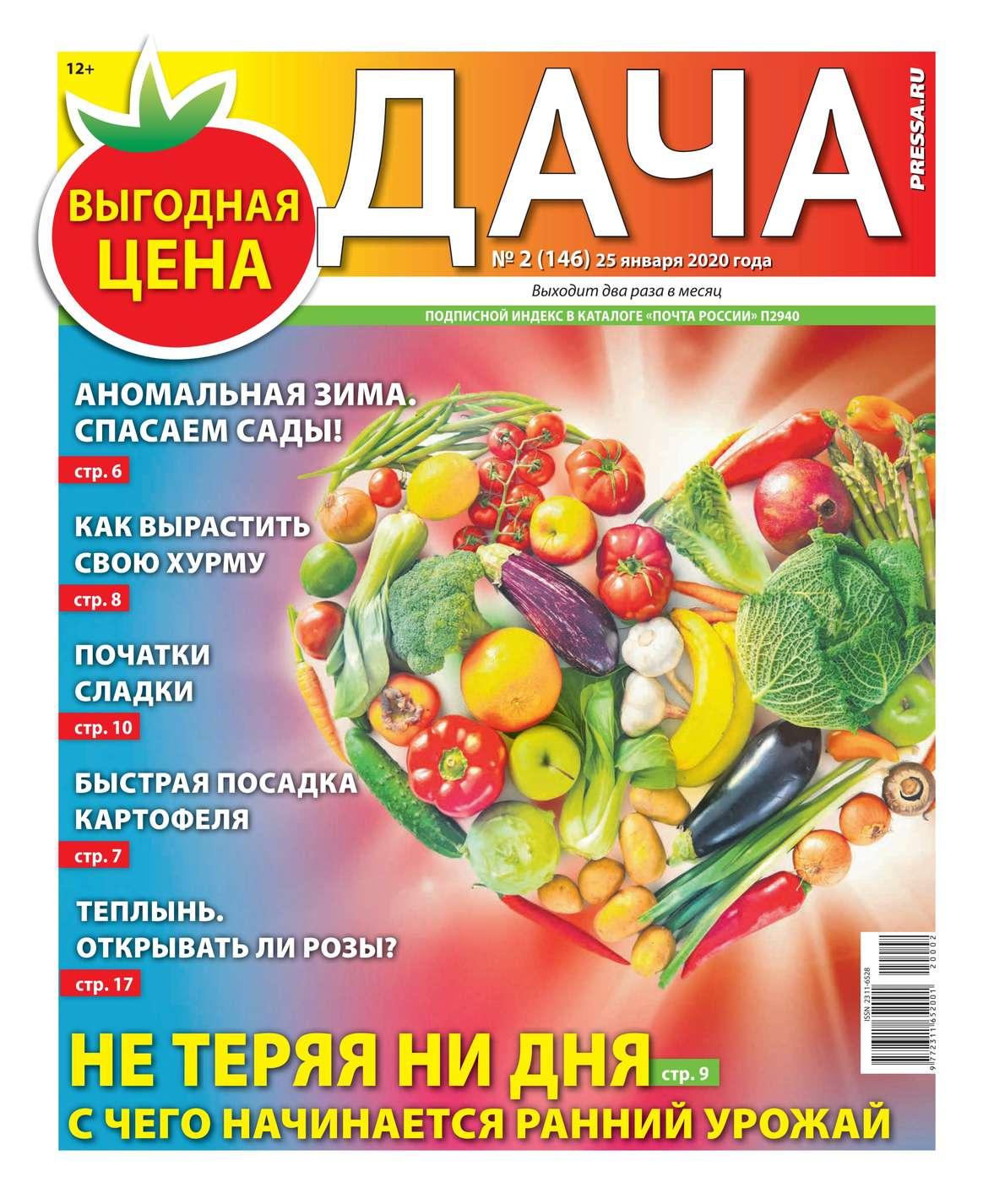 Дача Pressa.ru 02-2020
