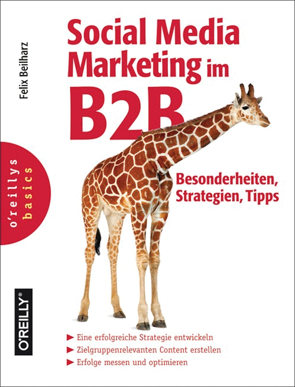 Felix Beilharz Social Media Marketing im B2B - Besonderheiten, Strategien, Tipps