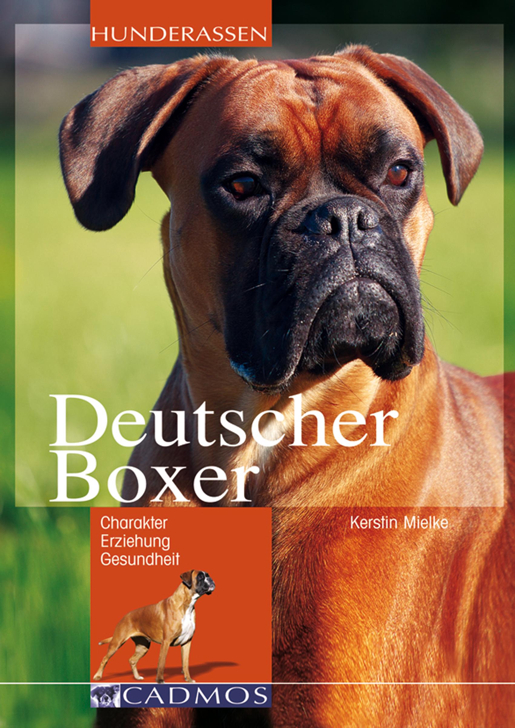 Kerstin Mielke Deutscher Boxer georg von ompteda deutscher adel um 1900 3