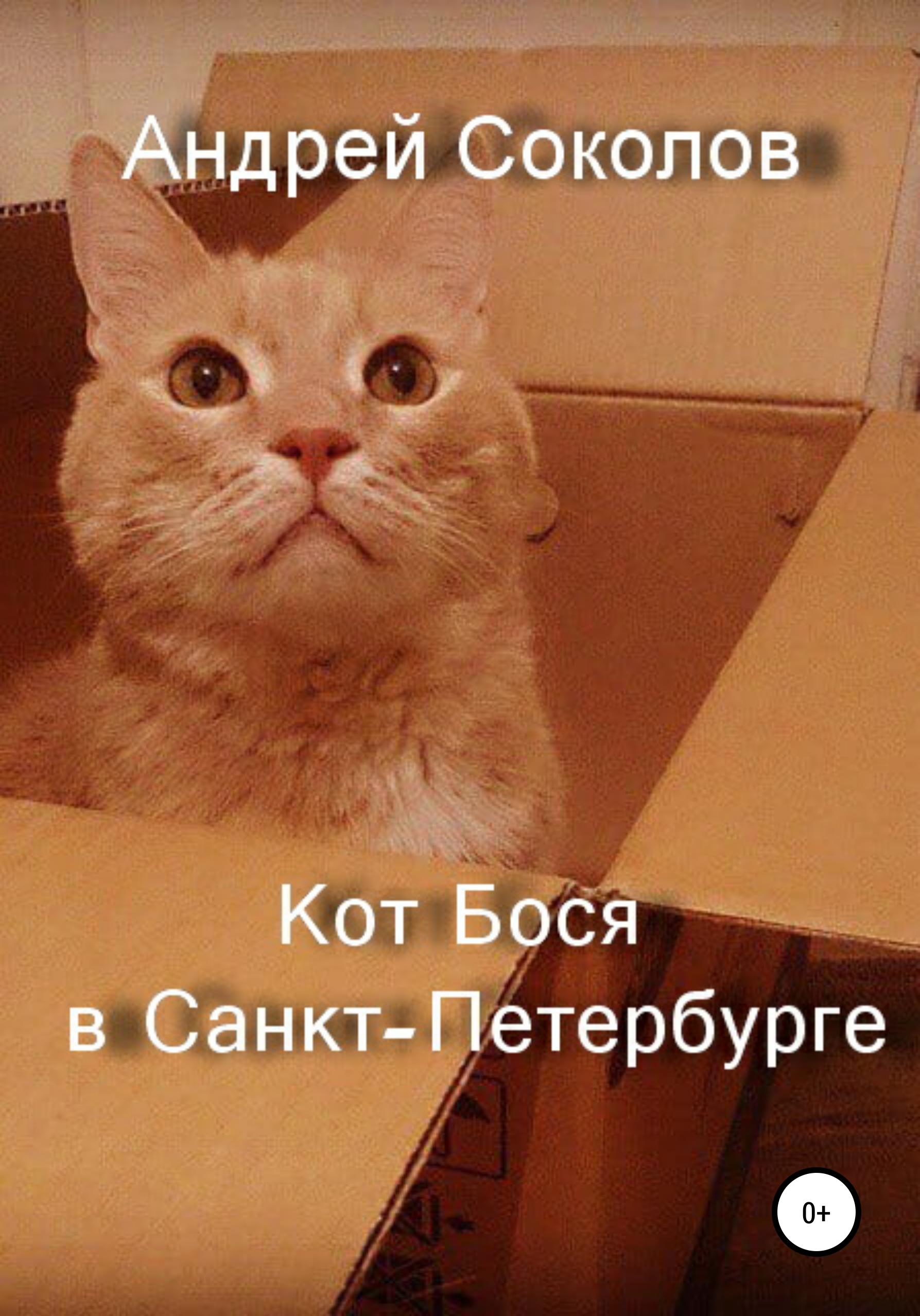 Андрей Николаевич Соколов Кот Бося в Санкт-Петербурге