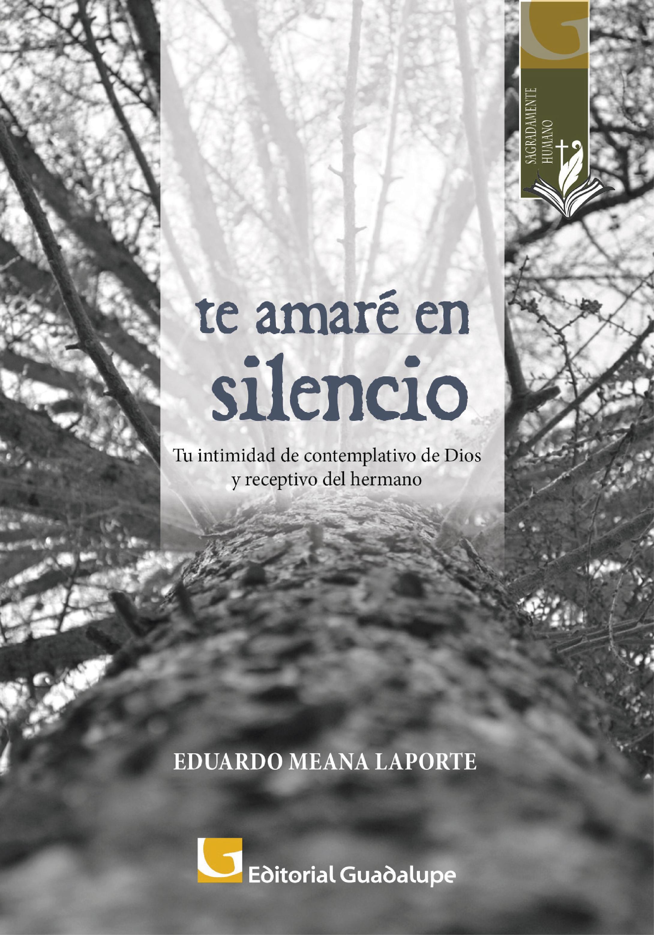 Eduardo Meana Laporte Te amaré en silencio un largo silencio