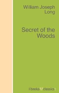 William J. Long Secret of the Woods manual grape pendant personality fashion popular long earrings