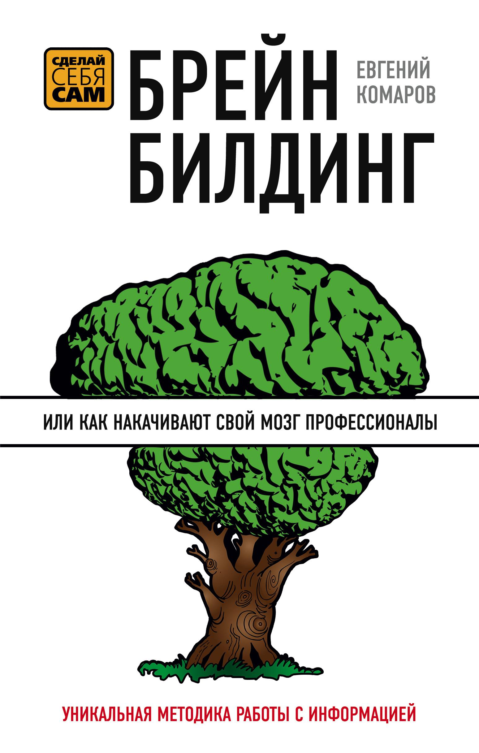 Евгений Иванович Комаров Брейнбилдинг, или Как накачивают свой мозг профессионалы