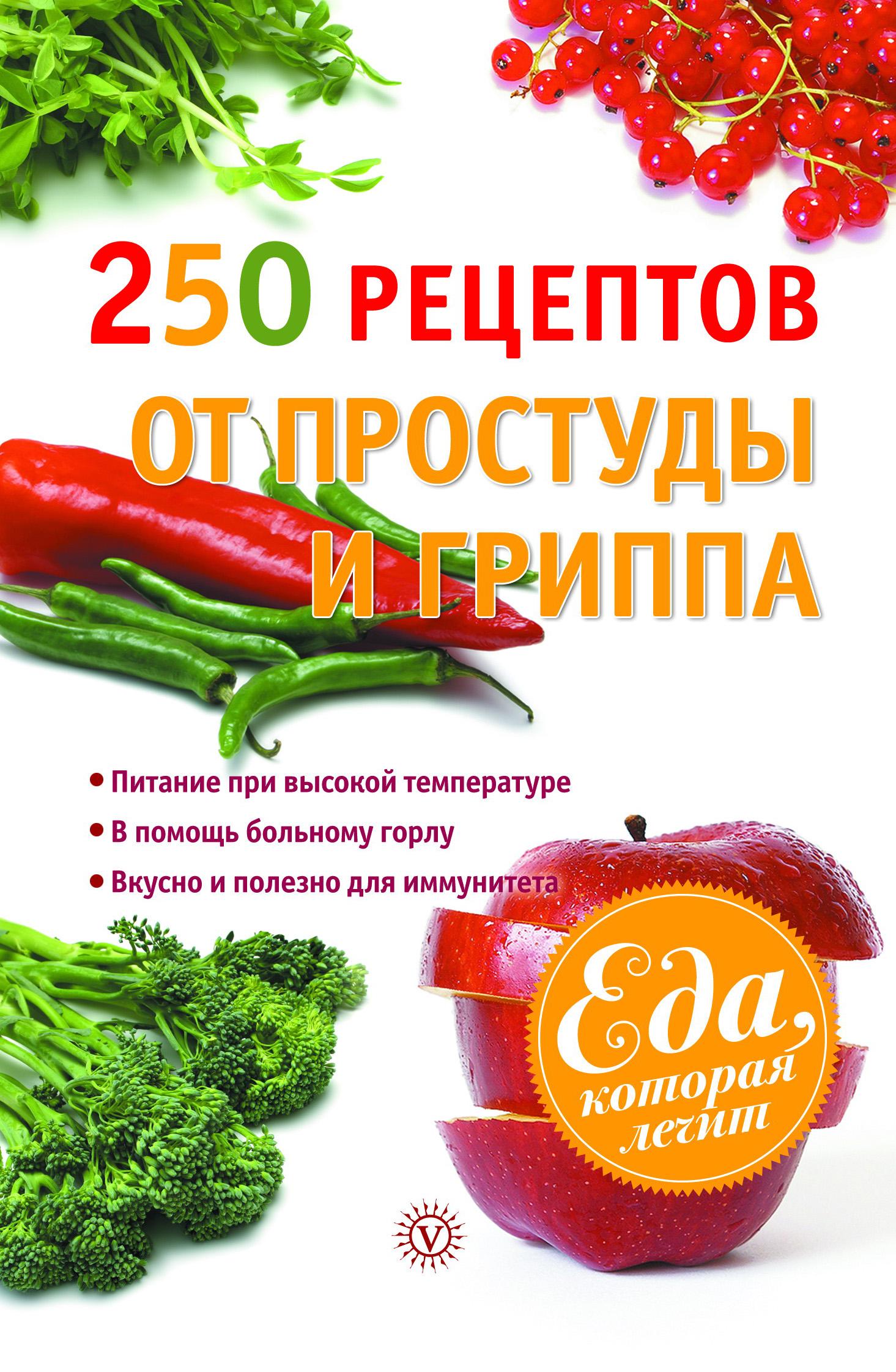 Виктор Ильин 250 рецептов от простуды и гриппа комаровский е о орз руководство для здравомыслящих роди