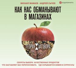 Мамаев Михаил Алексеевич, Сычев Андрей Анатольевич Теория заговора. Как нас обманывают в магазинах обложка