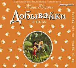 Нортон Мэри Добывайки в поле (ил. В. Харченко) (#2) обложка