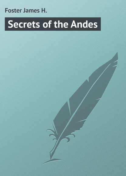 Foster James H. Secrets of the Andes james h the turn of the screw поворот винта на англ яз james h