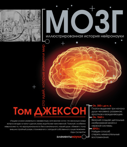 Том Джексон Мозг. Иллюстрированная история нейронауки том джексон математика иллюстрированная история
